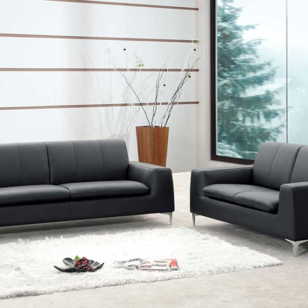Leather Sofa Front